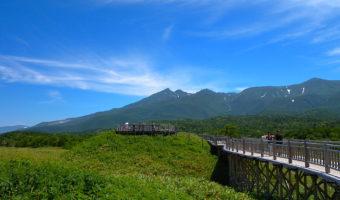 知床五湖・高架木道を歩こう!
