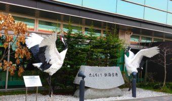 【地図】釧路空港から世界遺産知床羅臼までのアクセス方法は?